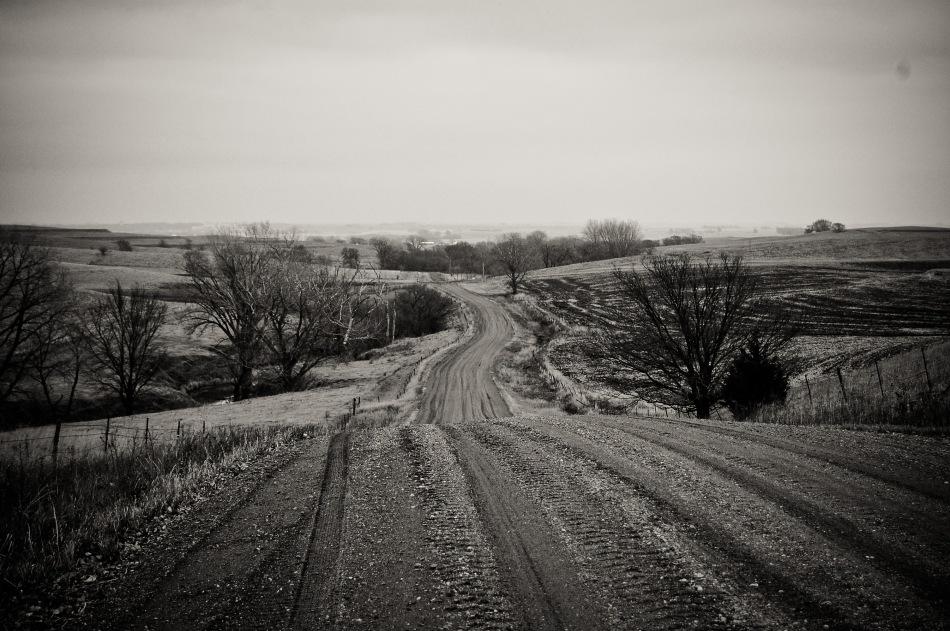 Landscape-55